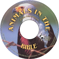 animals-in-the-bible