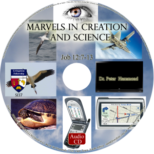 Marvels in Creation and Science