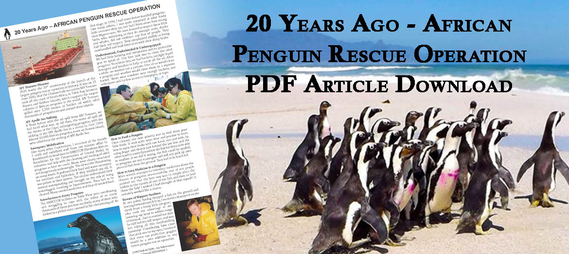 Penguin Rescue email banner 2