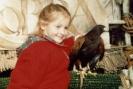 Birds_37